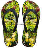 Zapatos ocasionales del deslizador del fracaso de tirón de la última impresión del diseño 3D (FF68-13)