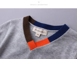 100%年の綿Long Sleeve SpringかAutumn Boy Sweater