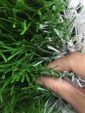 45mmのフットボールの草