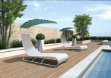 Напольная мебель, установленный сад софы отдыха (FP0193)