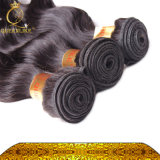 100%Full Cuticle Aligned Virgin Hair, Unpressed Loose Wave Human brasileiro Hair (FDX-SM-2016-5)