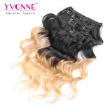 Ombre Hair Extensions Clip in Human Hair