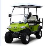 Véhicule avec des erreurs électrique de chasse de chariot de golf (DEL2022D2Z, vert)