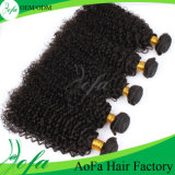 Выдвижение человеческих волос волос девственницы бразильянина Гуанчжоу Aofa 100% Kinky курчавое