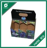 Print su ordinazione Corrugated Wine o Beer Bottles Package Box