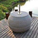 Nichtstuer Rücksortierung-Rattan-Möbel-im Freien Gartensun-Apple