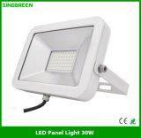 Luz de inundação quente 30W do diodo emissor de luz do produto novo das vendas