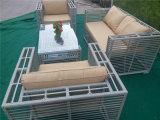 Meubles extérieurs de sofa de jardin de rotin