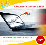Accessoire 11.6 neuf initial en gros d'ordinateur portatif d'écran LCD de Matt DEL pour B116xtn02.1