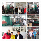 Q378販売のための熱い販売の高く技術的なショットブラストのクリーニング機械