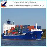 A carga internacional presta serviços de manutenção ao transporte do mar de FCL LCL de Colombo, Sri Lanka a Guangzhou, China