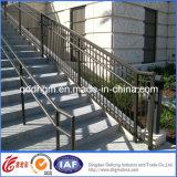 Pêche à la traîne extérieure/Handrailing d'escalier en métal de modèle moderne