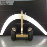 Véhicule de transport personnel électrique de bon équilibre debout des prix 2014