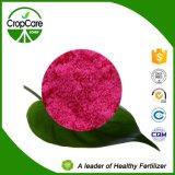 Engrais composé hydrosoluble NPK de 100%