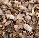 Bois, granule de biomasse, chaudière de solide de vapeur de charbon