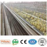 Matériel de ferme avicole ou système de cages de poulet de poulette