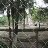 ステンレス鋼結ばれたロープの網か網または庭の塀