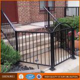 Frontière de sécurité galvanisée enduite par poudre noire en métal de fer travaillé de couleur pour extérieur