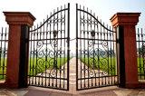 Nueva puerta forjada decorativa del hierro del jardín