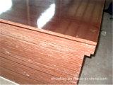 Pegamento de la base WBP del álamo de la madera contrachapada de la construcción