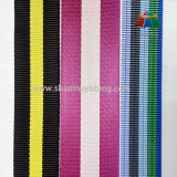 Nylon/Polyester Eco-Friendly Webbing para Garments e Bags