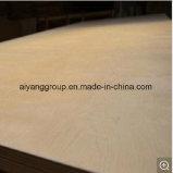 Constructeur de contre-plaqué de fantaisie/de contre-plaqué bouleau Bintangor/Okoume de peuplier pour des meubles