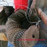 De hoogwaardige Bladen van de Cirkelzaag van de Deklaag van het Tin Dm05 HSS voor Roestvrij staal