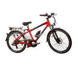 Aluminiumrahmen-elektrisches Fahrrad mit Lithium-Batterie (TDE-015)