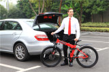 Electric Pocket バイクFolding Electric 自転車Electric 自転車
