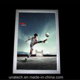 Slank Onverwacht Frame die het Lichte Vakje van de Advertenties van leiden- Media adverteren