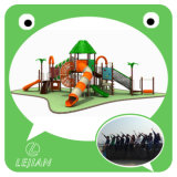 En1176 High Quality Children Plastic Outdoor Playground