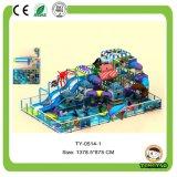 Campo da giuoco dell'interno commerciale del parco di divertimenti per i capretti
