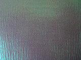 Tessuto del Organza del Rainbow grinza/della piega