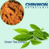 6. Anti-oxyderende Polyphenols van de Thee 98% Groen Uittreksel van de Thee