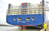 La logistica veloce di trasporto del trasporto consolida il servizio dalla Cina nel Cile