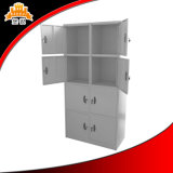 空港またはバス停留所のための工場によって供給される荷物の貯蔵用ロッカー