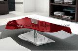 Mobilia di vetro del salone del tavolino da salotto (TB-S110)