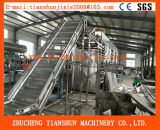 De plantaardige Machine van /Drying van de Riem Drogere voor Vruchten en Groenten 6000