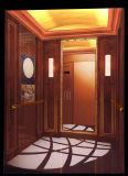 Elevador do elevador do passageiro de 6 pessoas