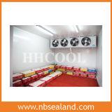 O centro o mais grande do armazenamento frio das frutas