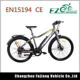 大人のためのLED表示が付いている都市電気自転車