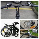 전기 자전거 En 15194를 접히는 20inch 타이어 250W 모터