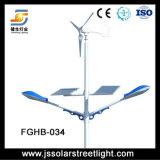 Luz de rua híbrida solar do vento com braços dobro