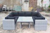 Sofa en osier de rotin de jardin de Tableau de Loungest de patio extérieur en verre de sofa réglé (J729HR)
