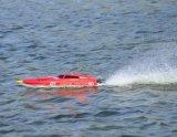 (cm) barcos de alta velocidad de Unibody del ABS 0187981-Vector 80