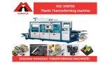 Récipient en plastique Hsc-540760 faisant la machine