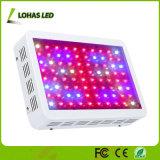 El poder más elevado LED crece 300W ligero 450W 600W 800W 900W 1000W 1200W crece la lámpara con el Ce RoHS