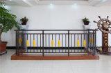 Balcón de acero galvanizado decorativo de alta calidad 21 que cercan con barandilla de la aleación de Haohan Alluminum