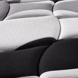 Materasso di molla naturale del lattice con la coperta di tela di lavoro a maglia ispessita (FB852)