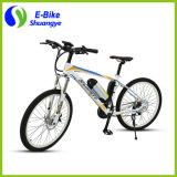新しいデザイン26インチのHeterotypeの管フレーム山の電気バイク